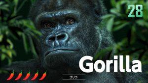 ゴリラ(イケメン)