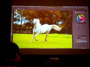 アドビの白い馬