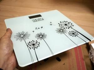 これが体重計。国内で流通している一般的な体重計よりひと回り小さい印象。